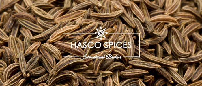Cumin Seed – Hasco Spices